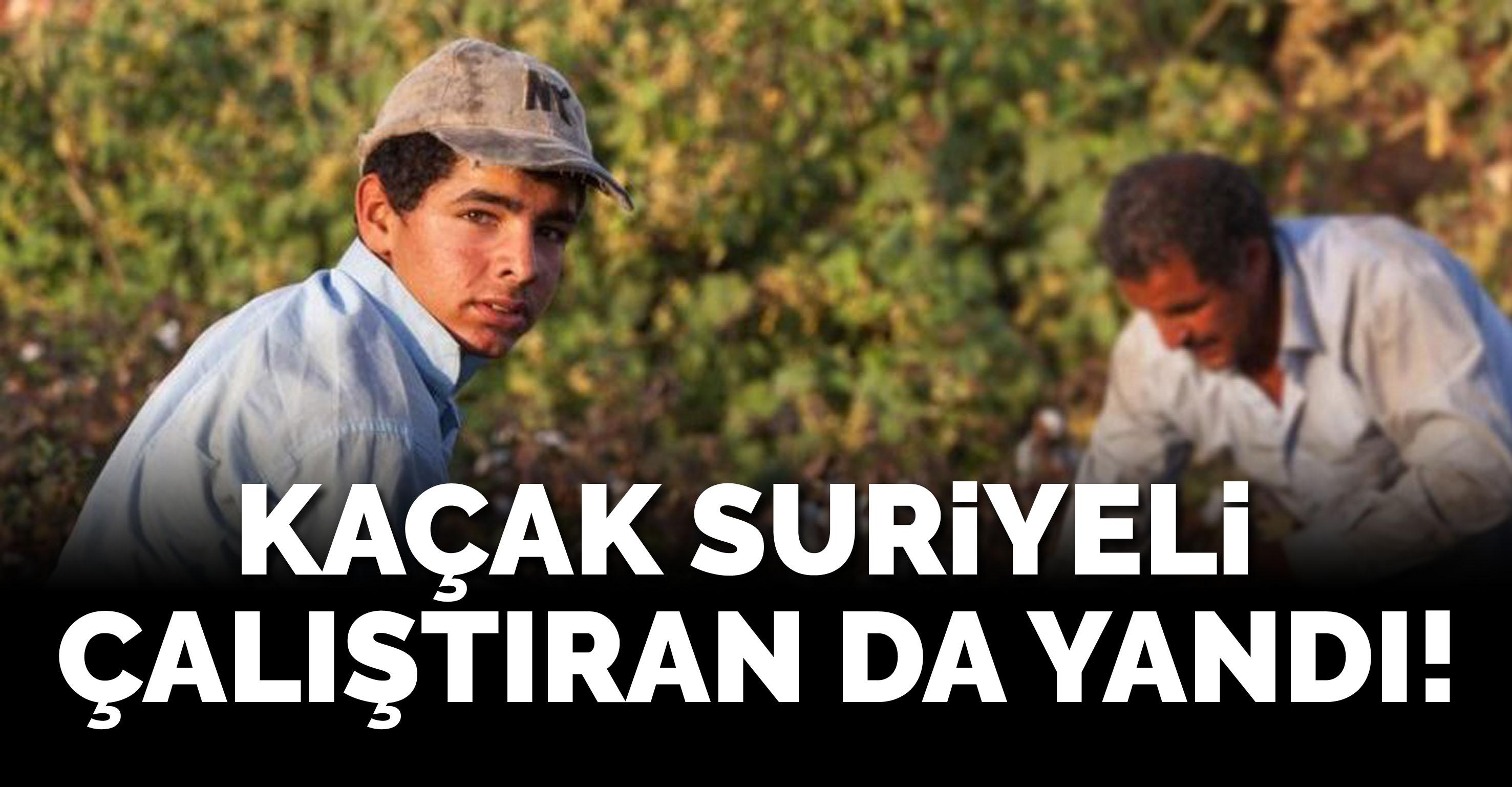 Kaçak Suriyeli çalıştıran da yandı!