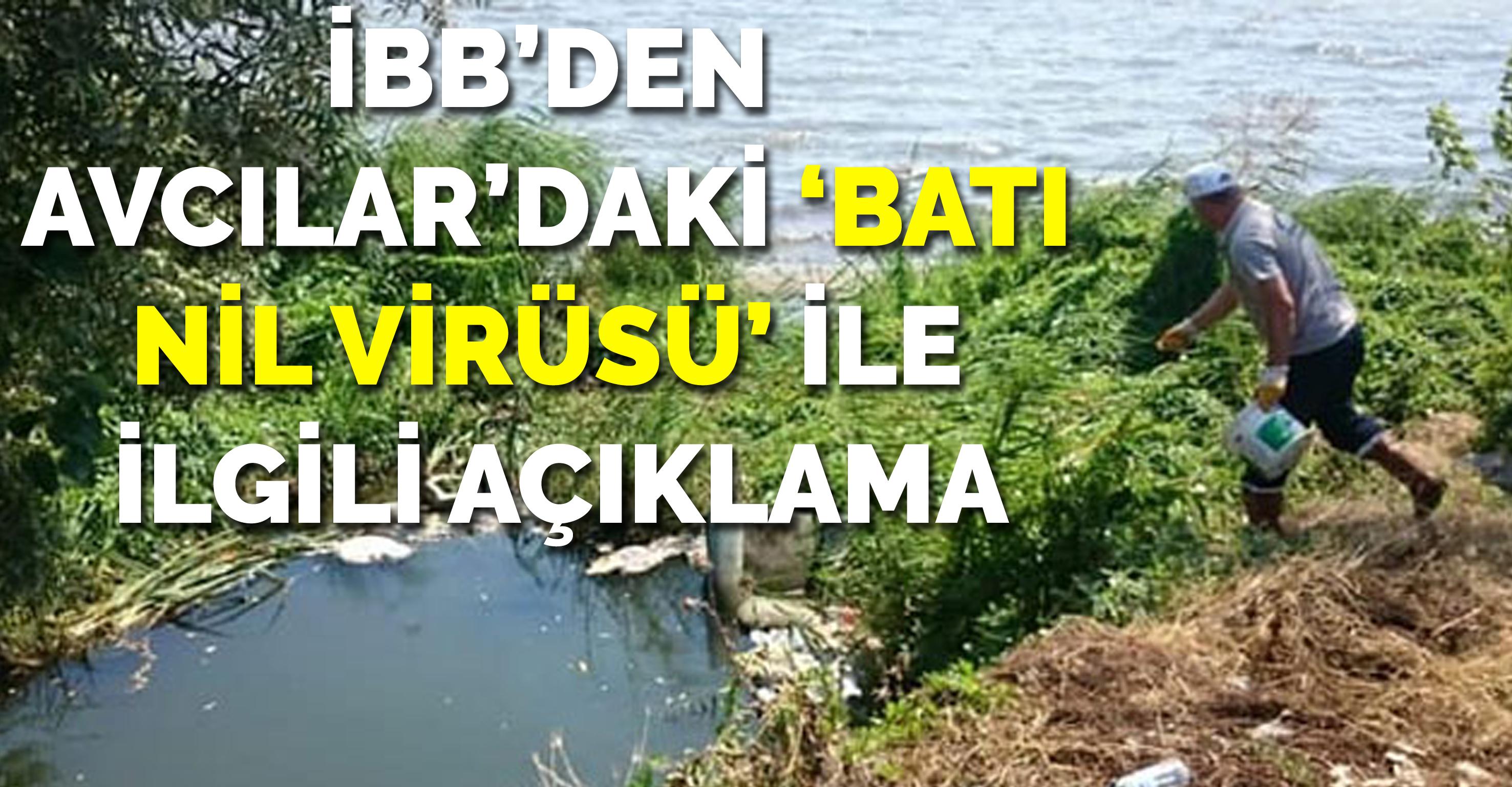 İBB'den Avcılar'daki 'Batı Nil Virüsü' ile ilgili açıklama