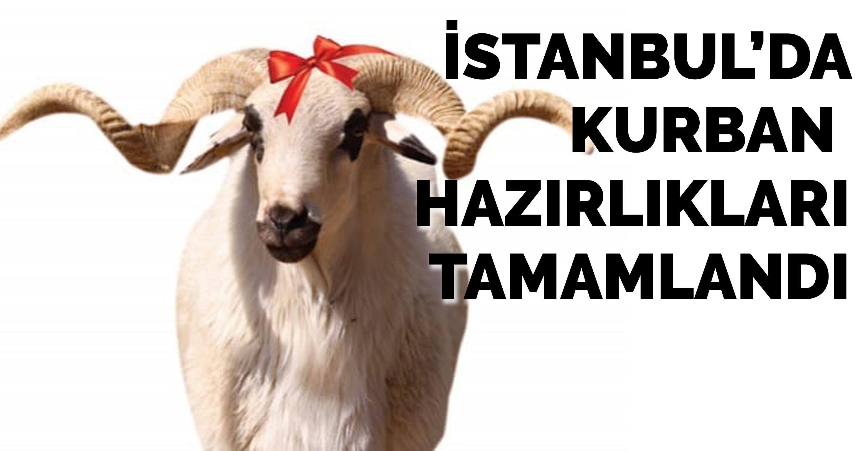 İstanbul'da kurban hazırlıkları tamamlandı