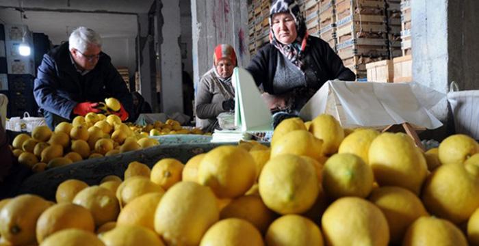 İstanbul'da zam şampiyonu yüzde 26 ile 'limon'