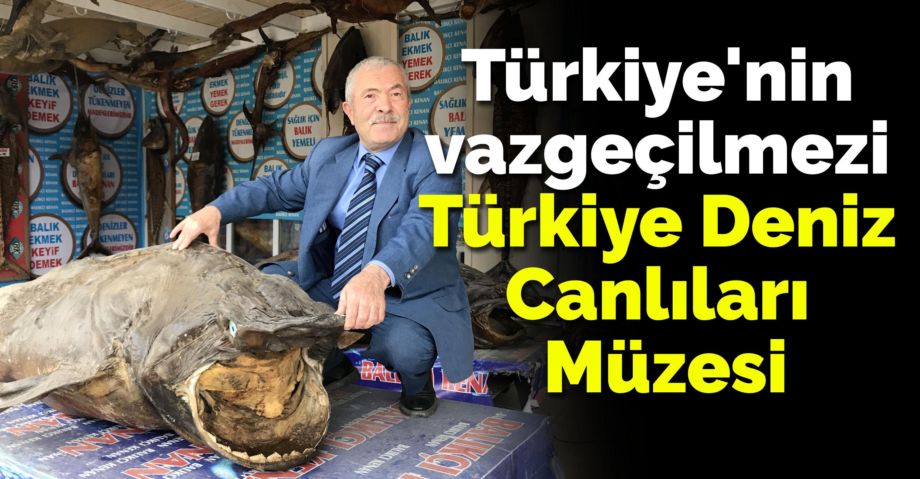 Türkiye'nin vazgeçilmezi Türkiye Deniz Canlıları Müzesi