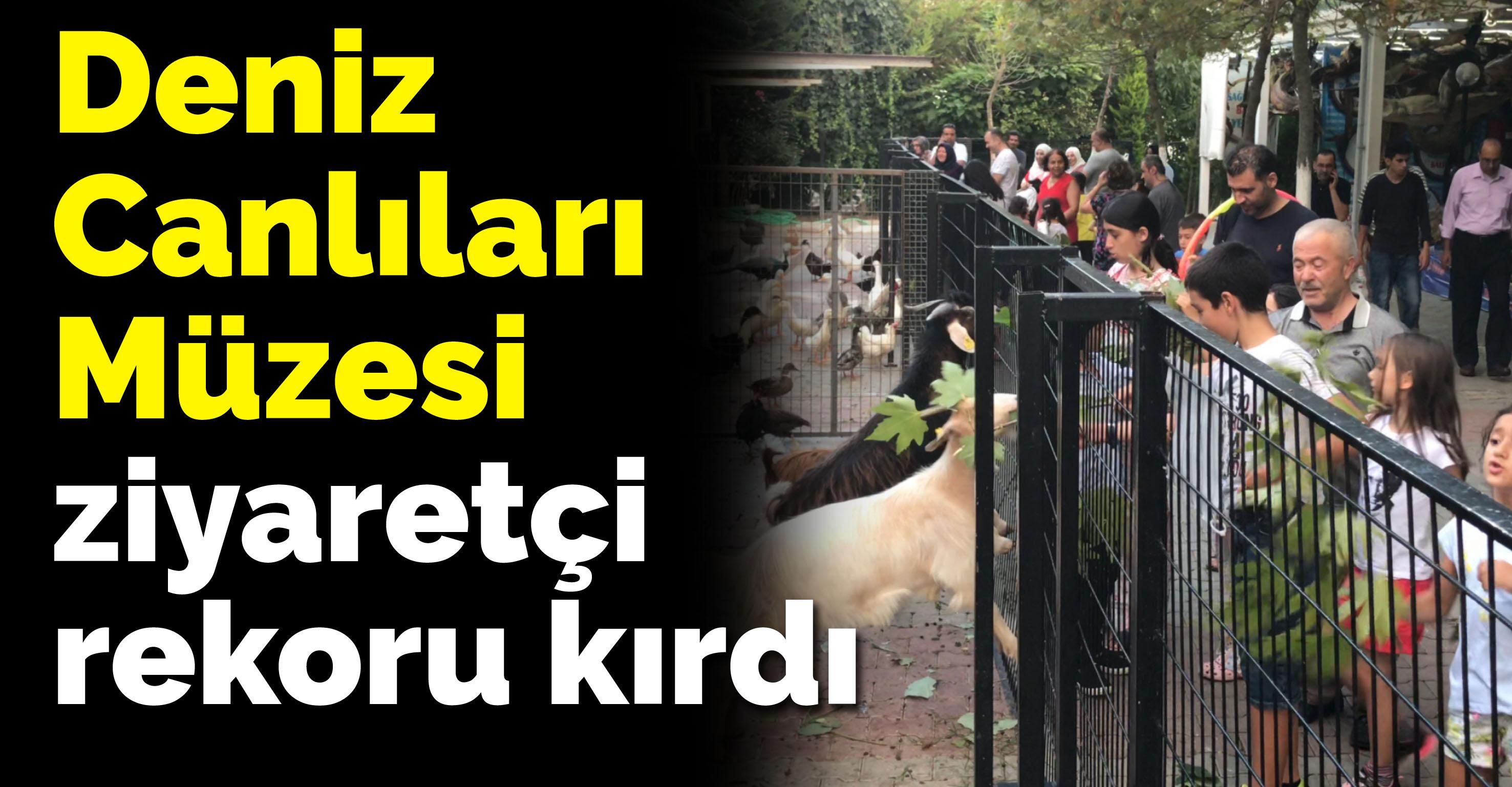 Türkiye Deniz Canlıları Müzesi ziyaretçi rekoru kırdı