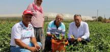 CHP İzmir Milletvekili Kani Beko'dan Yeni Açıklama
