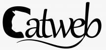 Catweb Reklam Ajansı İngiltere'den Sonra Artık Türkiye'de