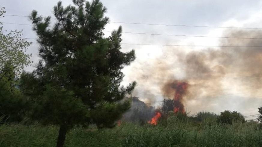 Büyükçekmece'de korkutan yangın
