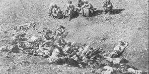 """""""Türkler değil Ermeniler soykırım yaptı"""""""