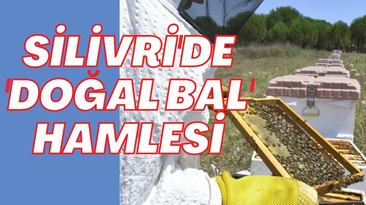SİLİVRİ BELEDİYESİ'NDEN 'DOĞAL BAL' HAMLESİ