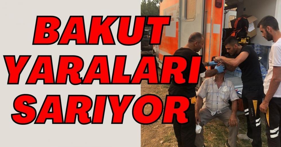 BAKUT YARALARI SARIYOR